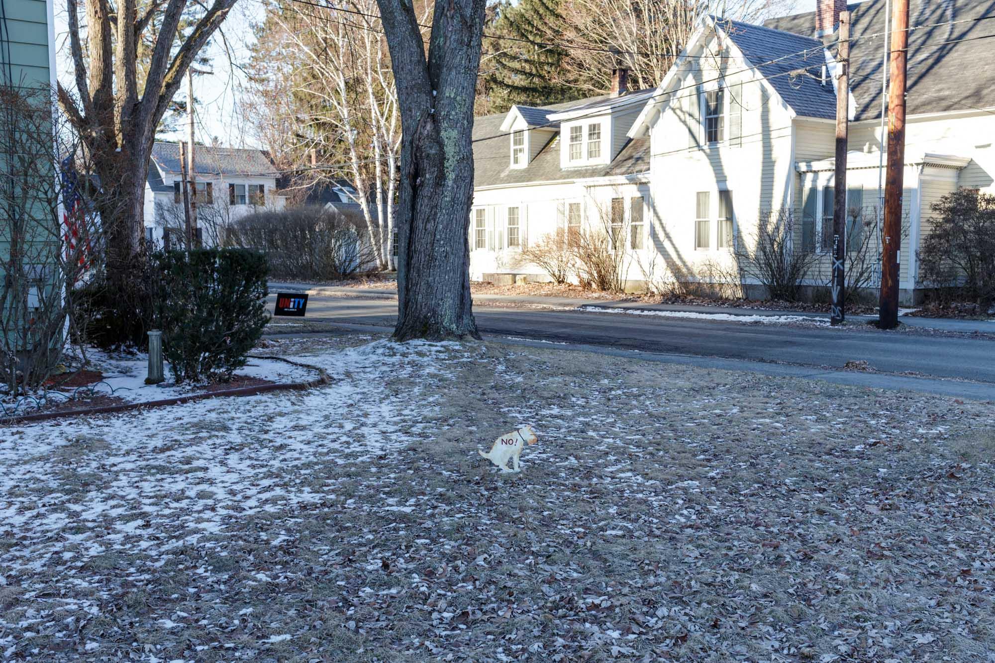 Dog Poop Sign on Lawn