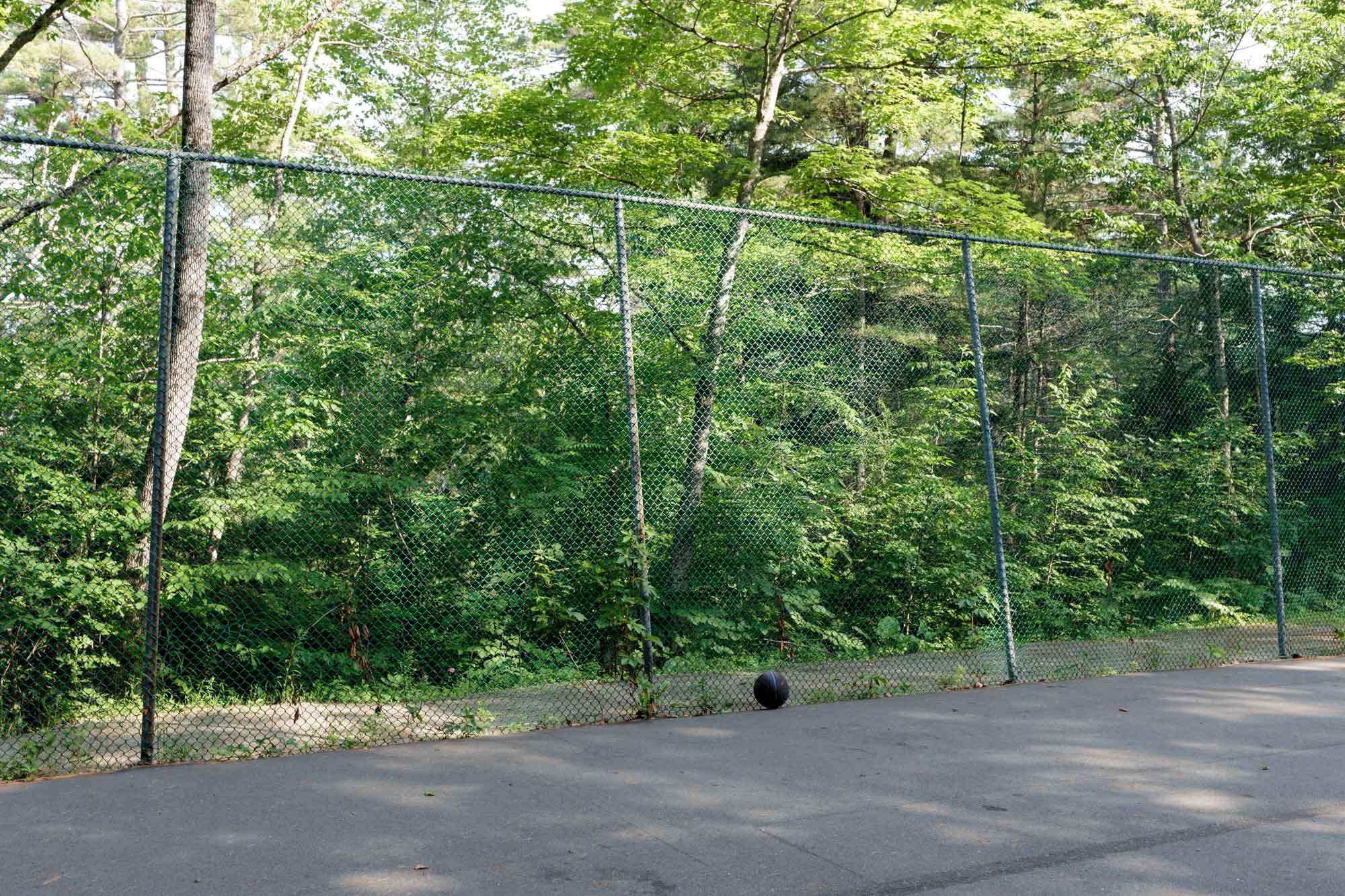 Basketball and Fence