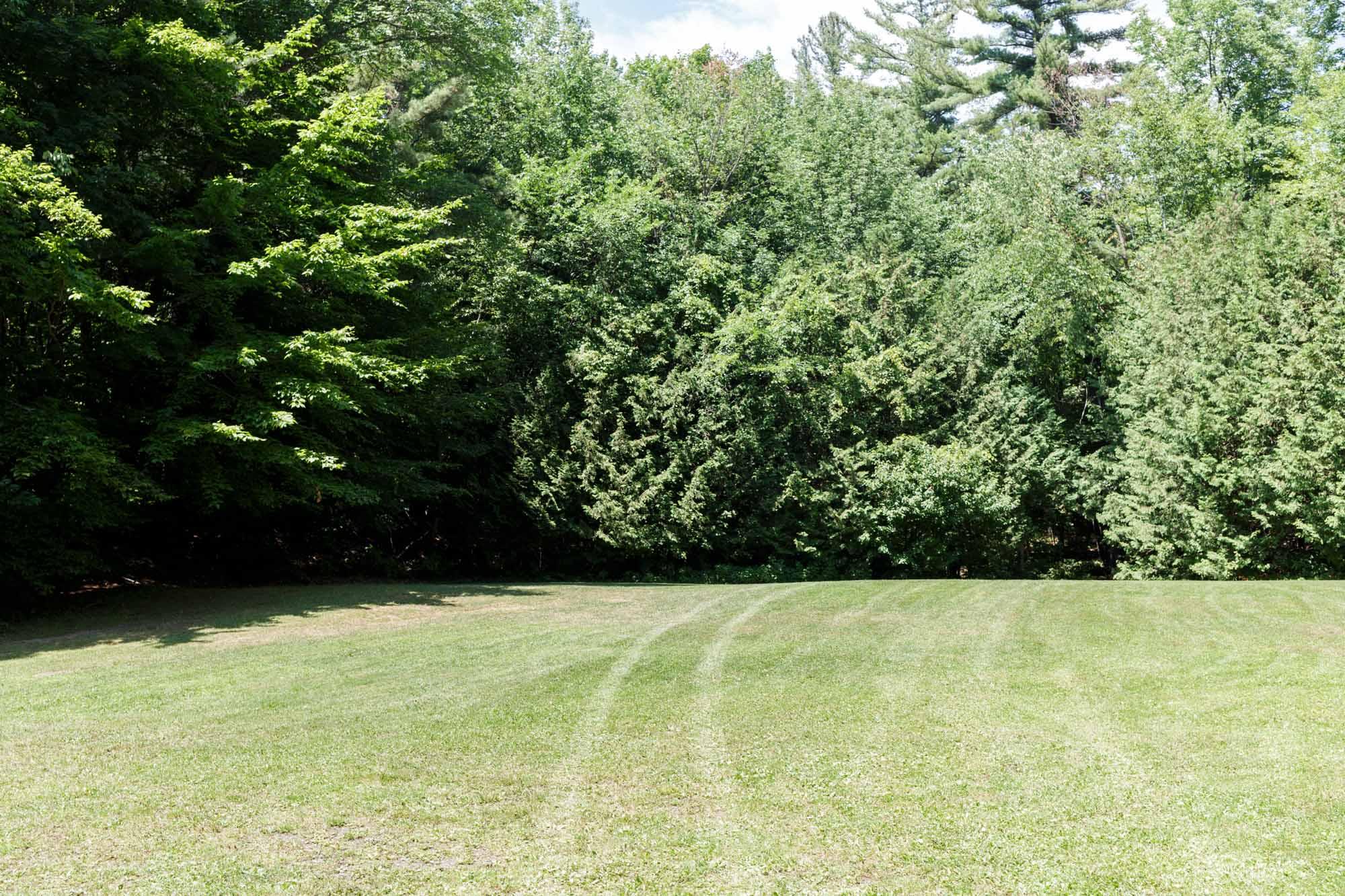 Tracks on Grass