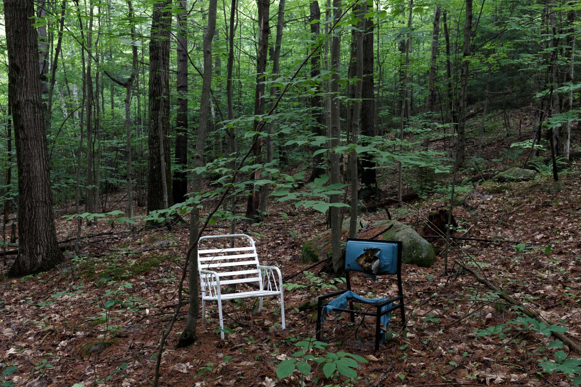 Two Chair in the Woods