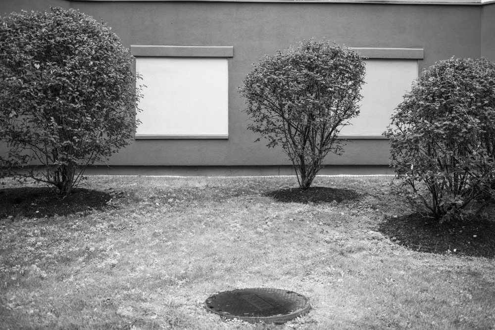 Manhole, Building, and Trees