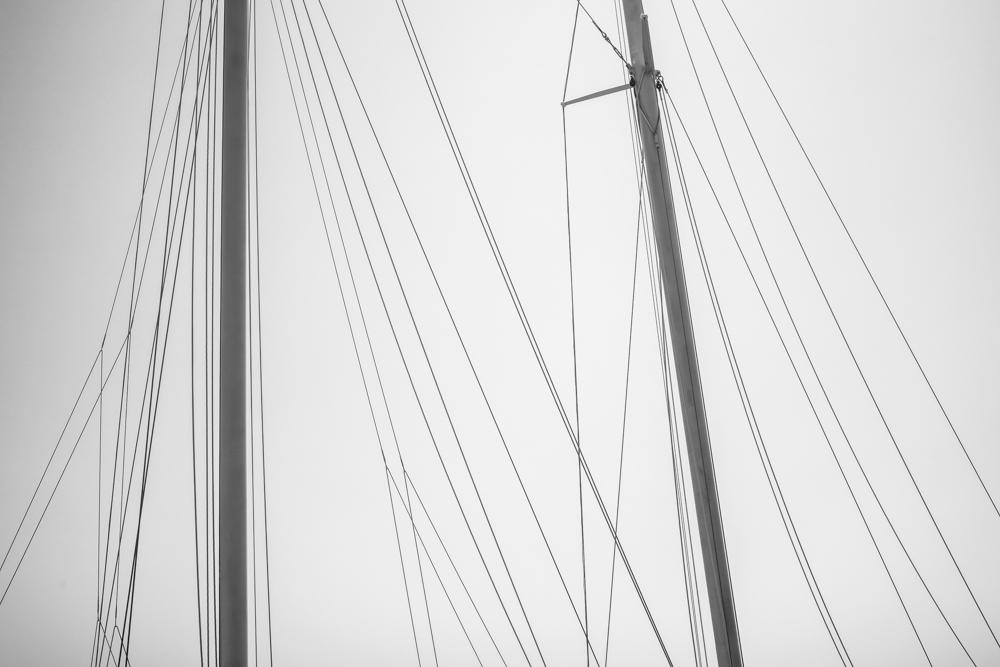 Sail Lines