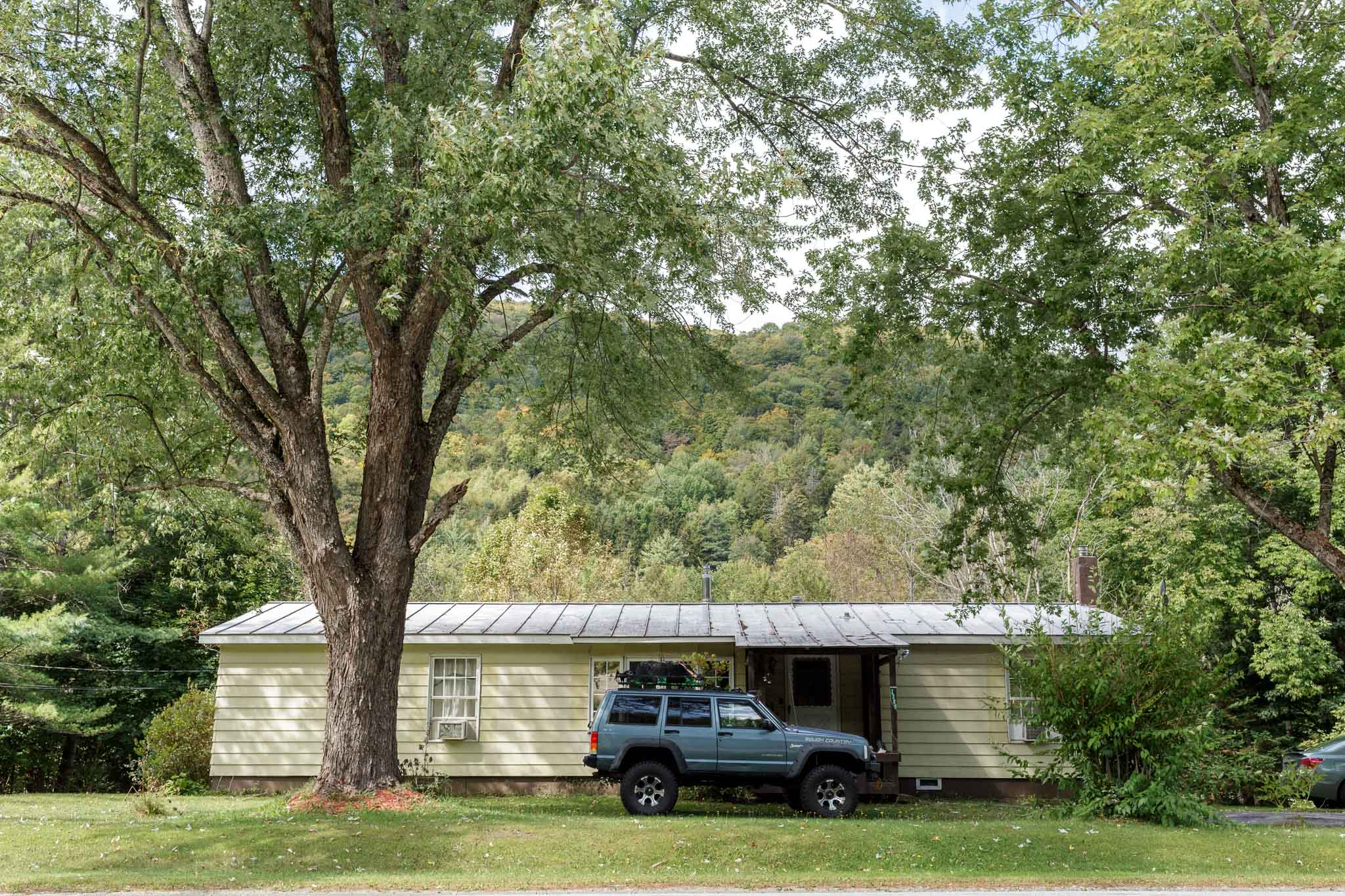 Trees, House, and SUV