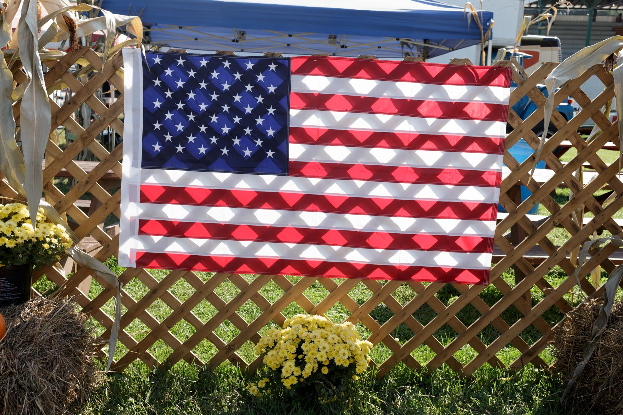 Flag on Fence