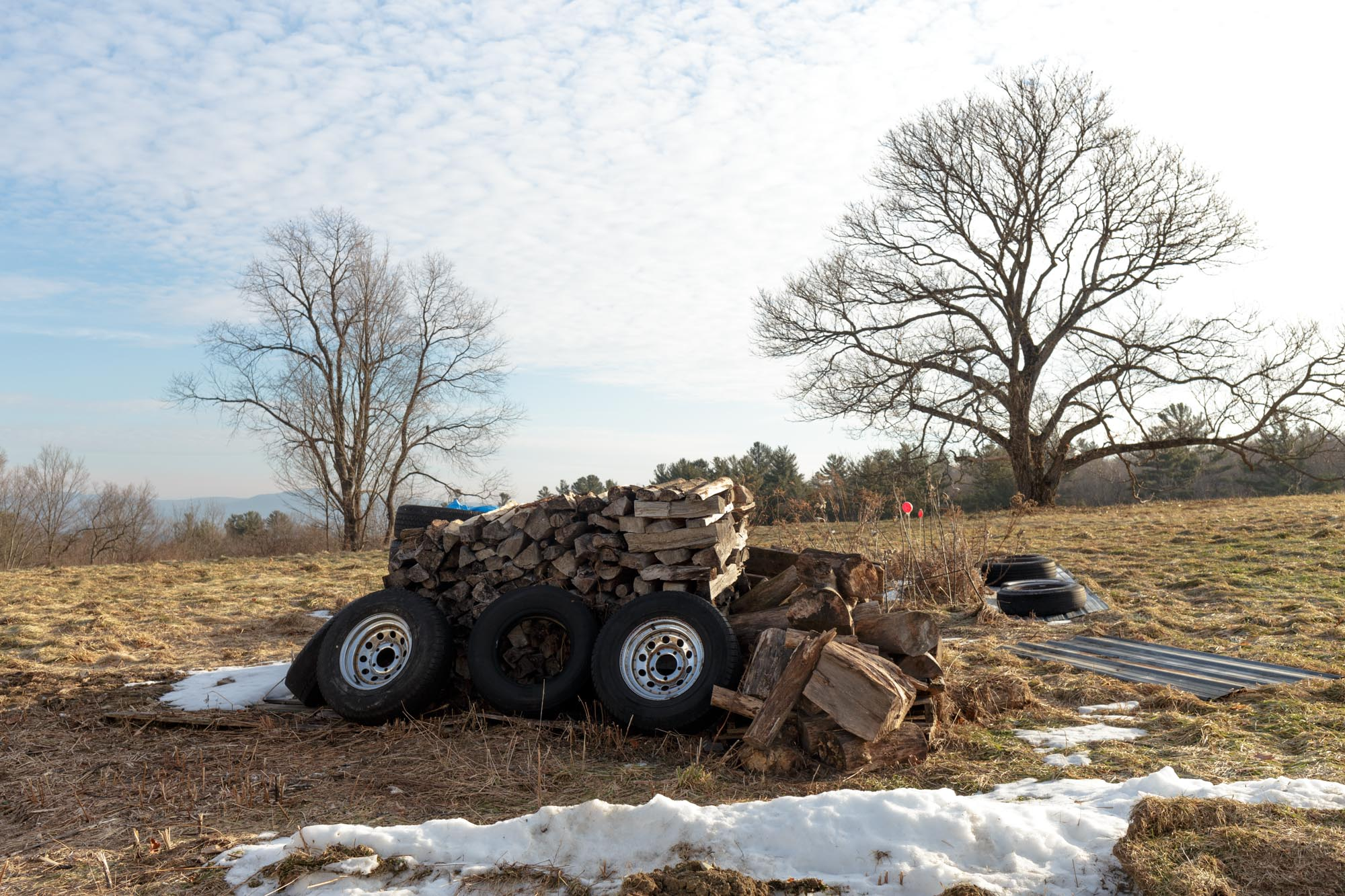 Tires and Wood in Field
